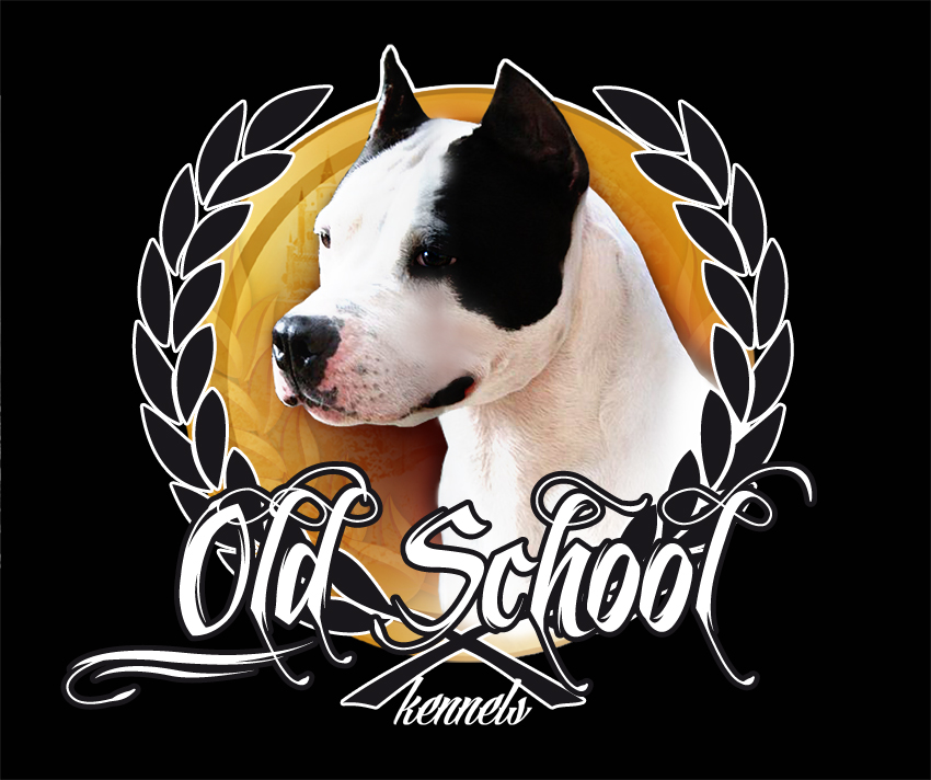 Logo OLD SCHOOL Fondo Negro2